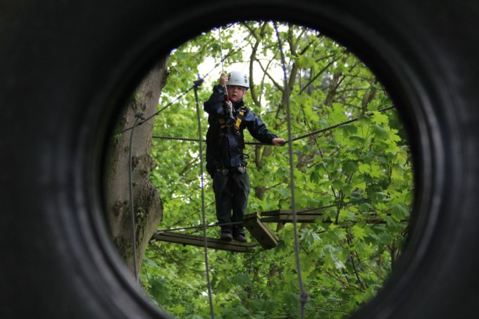 Tree-Trek-2