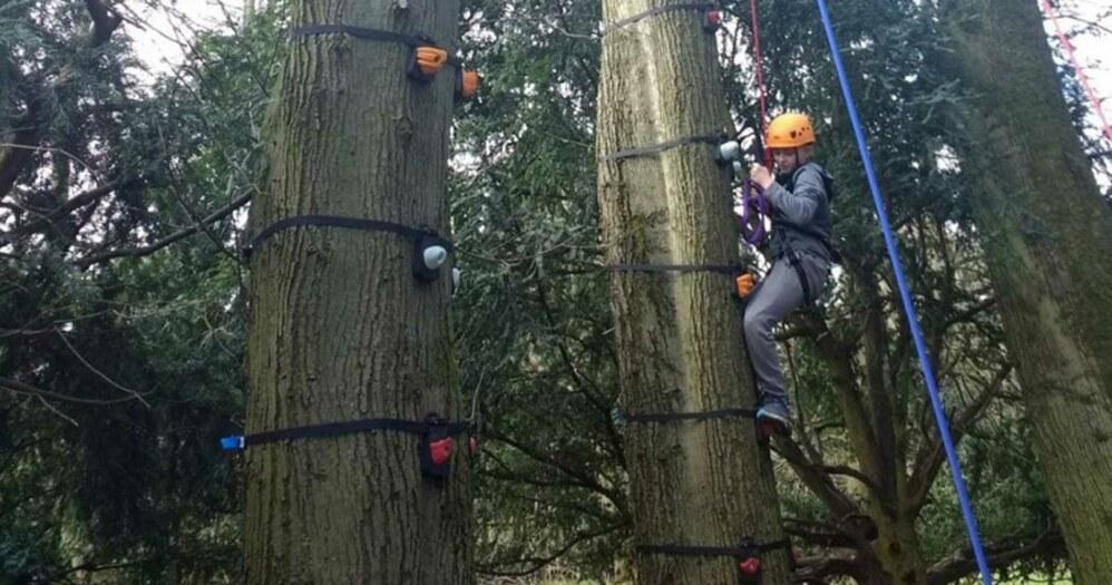 treeclimb-fi