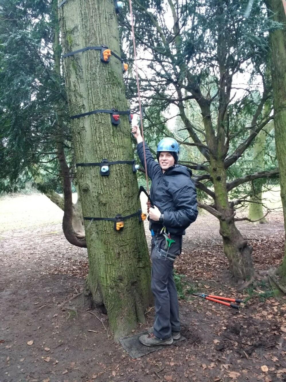 treeclimb2
